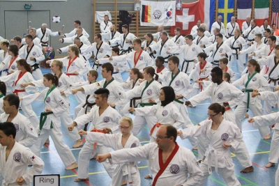 Deutsche Tang Soo Do Meisterschaft 2017 in Olching am 24.06.